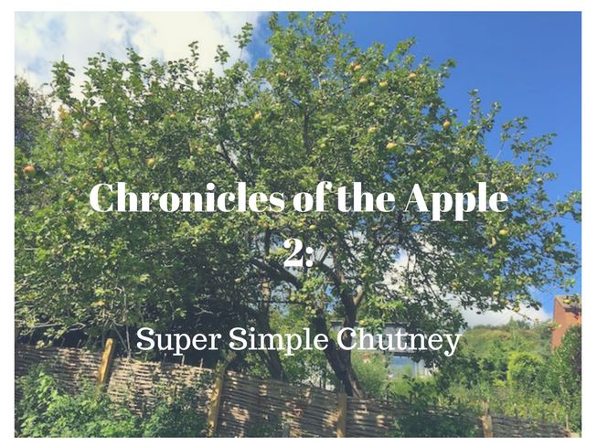 Chronicles of the Apple 2_