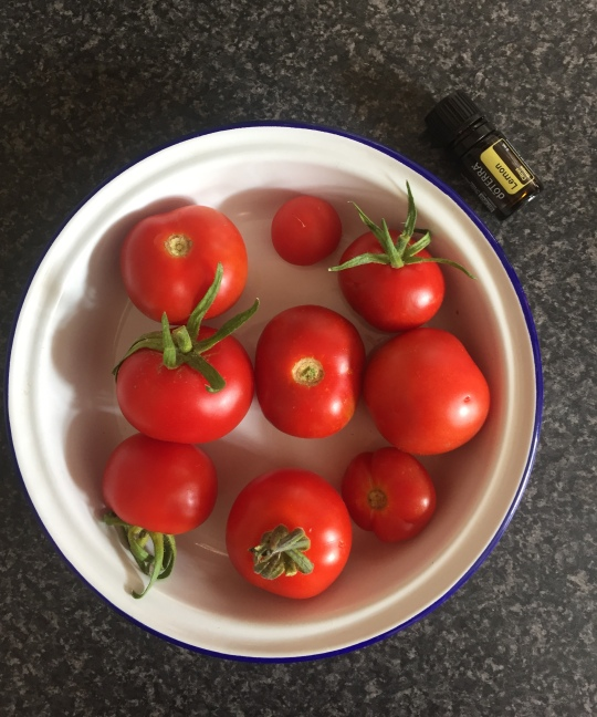 TomatoShot.jpg
